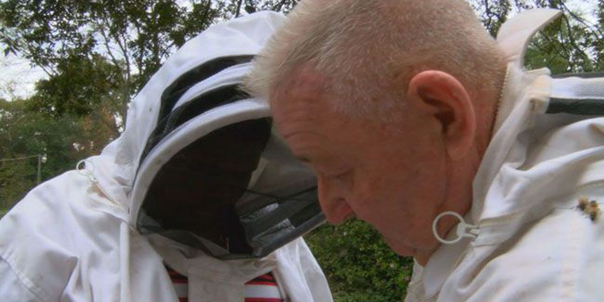 Experienced keeper helps Nacogdoches boy explore passion for bees