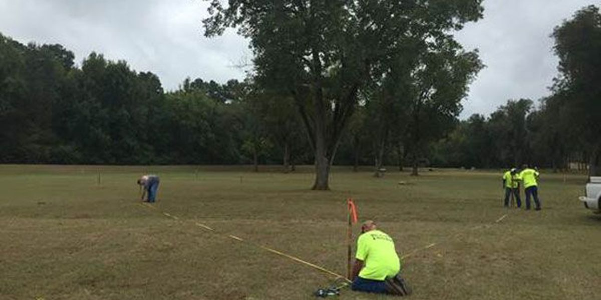 Volunteers needed for tree-planting event at Nacogdoches' Pecan Park