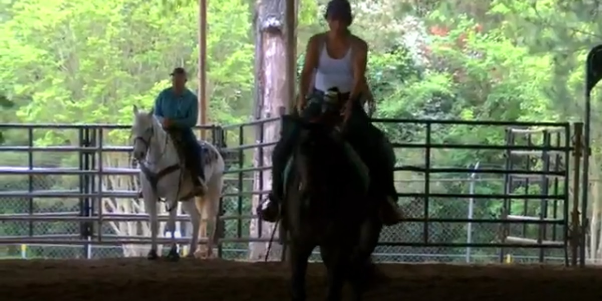 WEB XTRA: East Texas Spring Fling Horse Sale