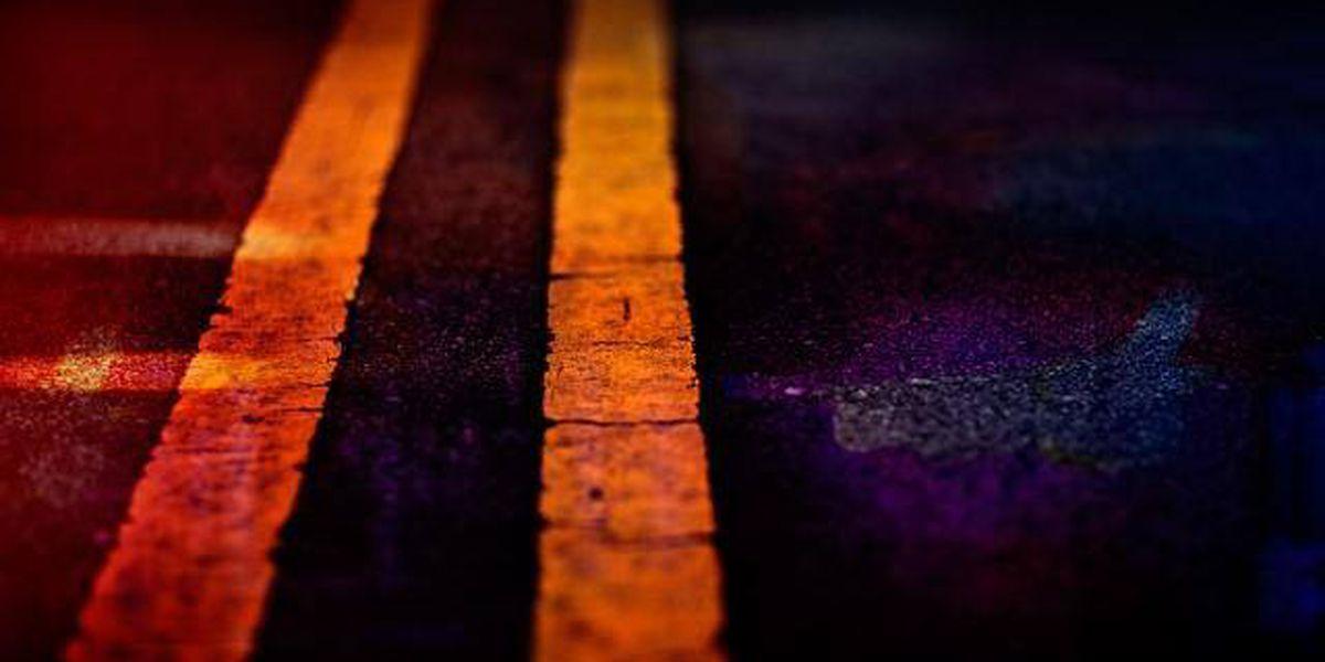 Grapeland man killed in single vehicle wreck