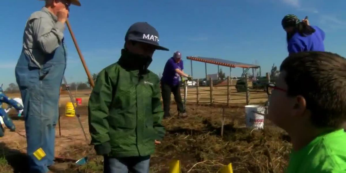 WEBXTRA: Snake Woman Garden tended to by volunteers