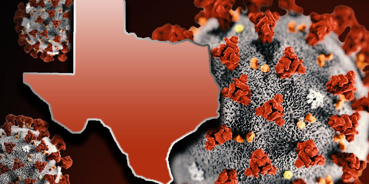 Texas reports 2,595 new COVID-19 cases, 21 more deaths