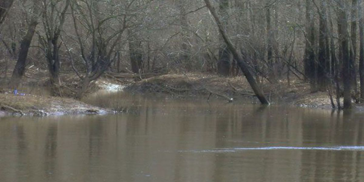 Proposed permit would allow 3 billion gallons to be pumped from Angelina River a year