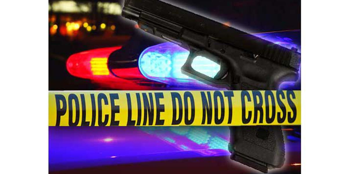 Tyler County sheriff investigating fatal Monday afternoon shooting
