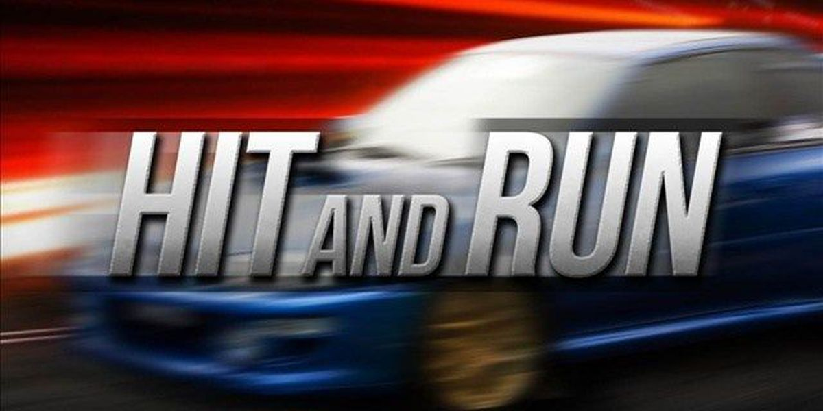 Livingston man dies in hit and run accident