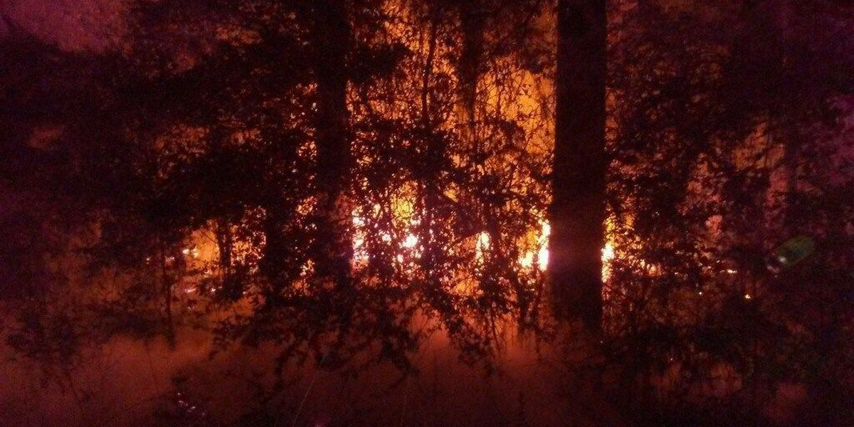 2 houses damaged in Thanksgiving fire, Angelina County officials investigating