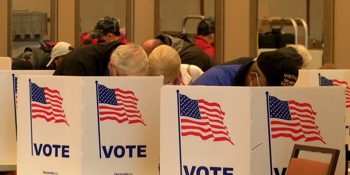 Voter info: All contested East Texas races
