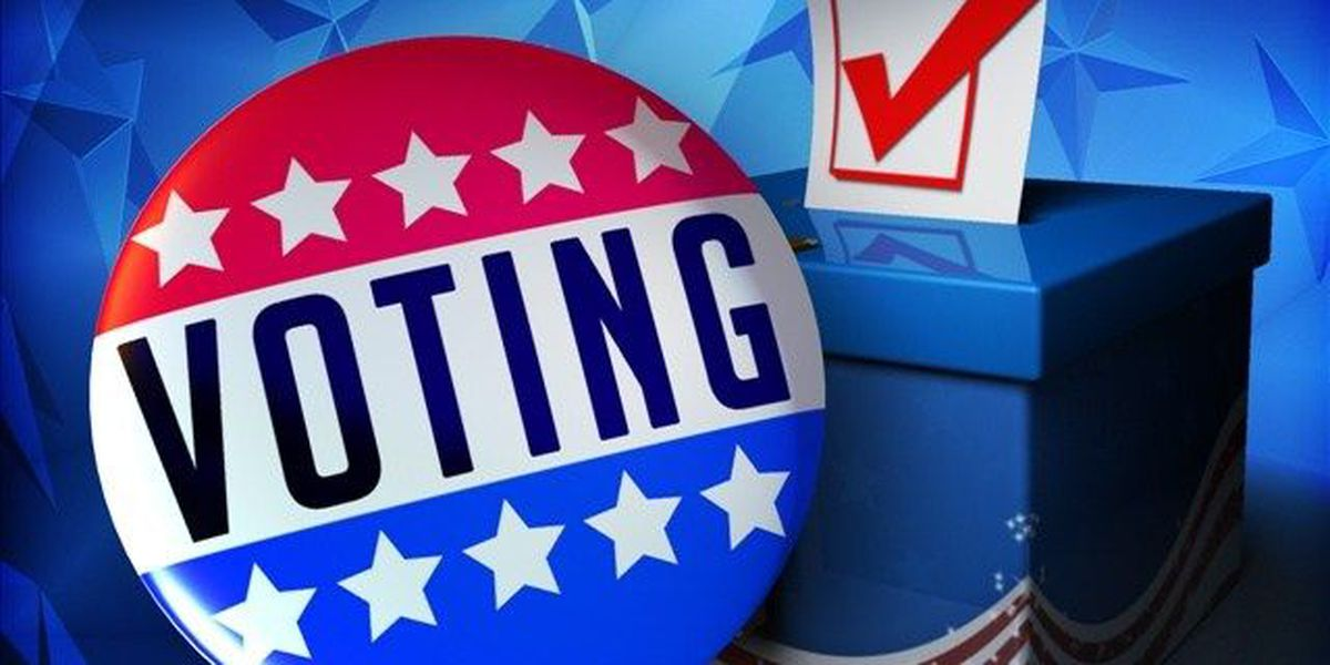 Early Voting numbers in East Texas show pride in both Republican and Democratic parties