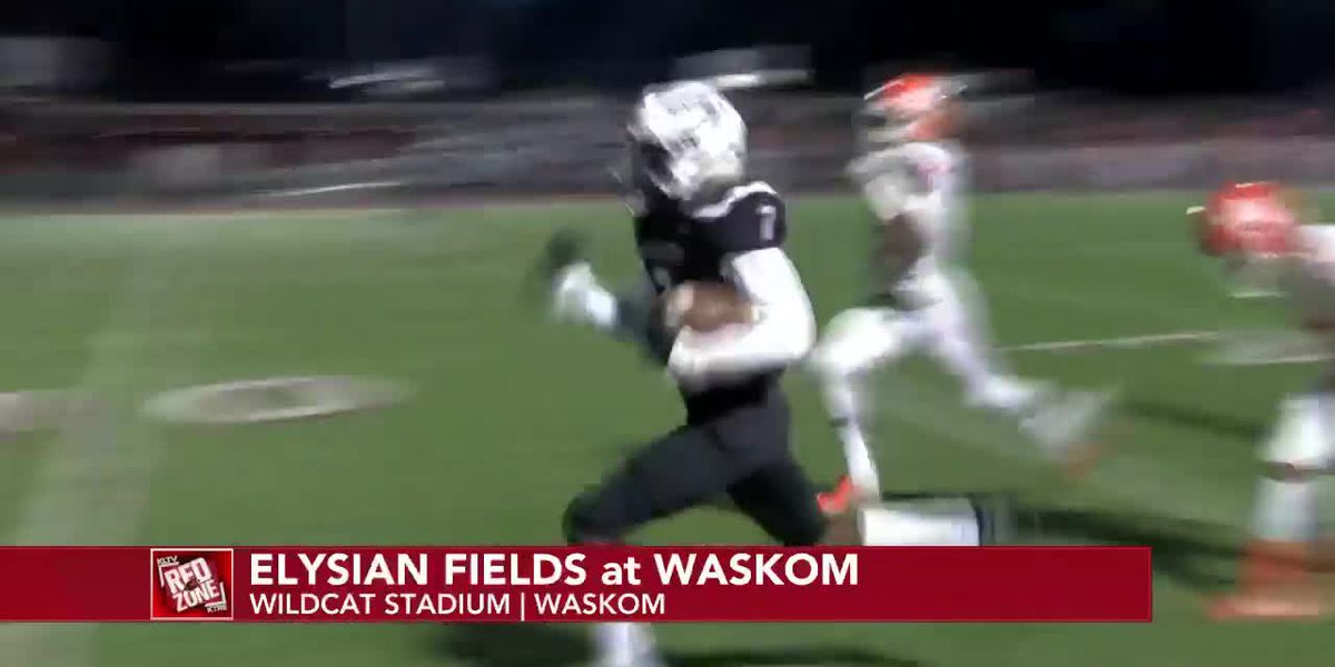 Week 8: Elysian Fields vs Waskom