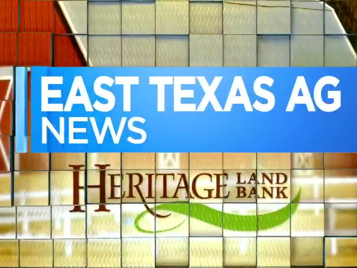 East Texas Ag News: Hay rings help cut down on wasted hay