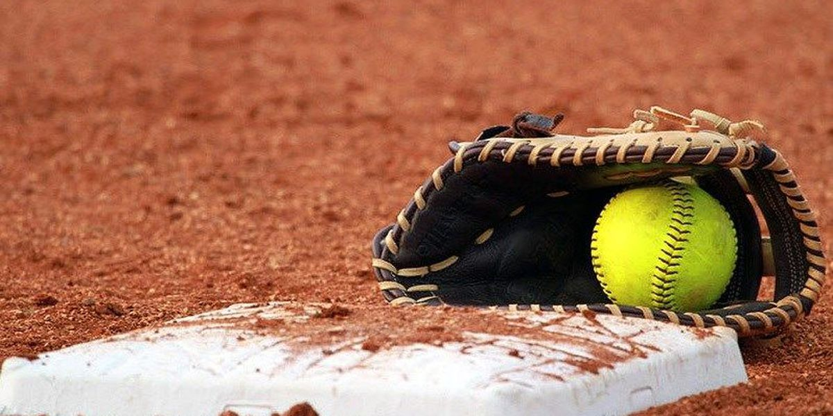 Friday night high school softball area-round scores