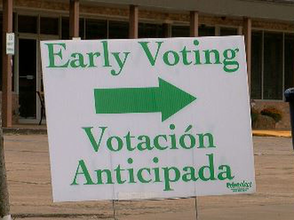 Rural East Texas counties see spikes in their early voting turnouts