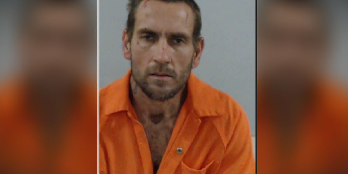 Naked Florida man bites K-9, punches and spits on deputies, cops say