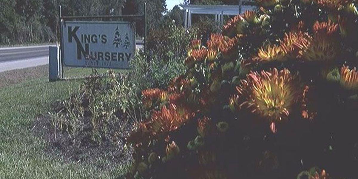 Tenaha nursery celebrates 100 years of serving community