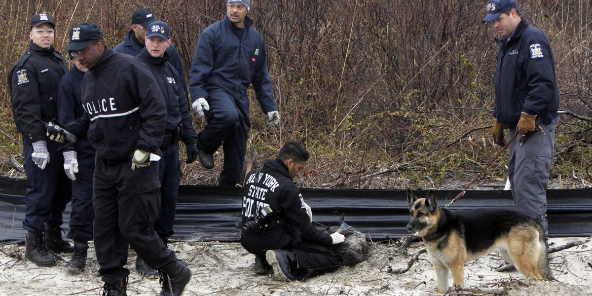 Police: Remains IDed in Long Island serial killer case