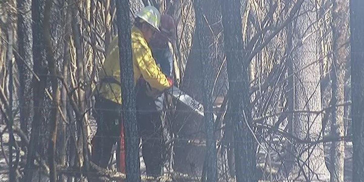 Corrigan-area fire fully contained