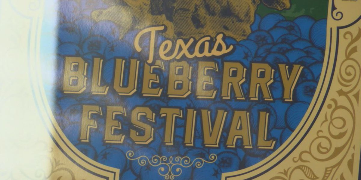 2020 Texas Blueberry Festival canceled