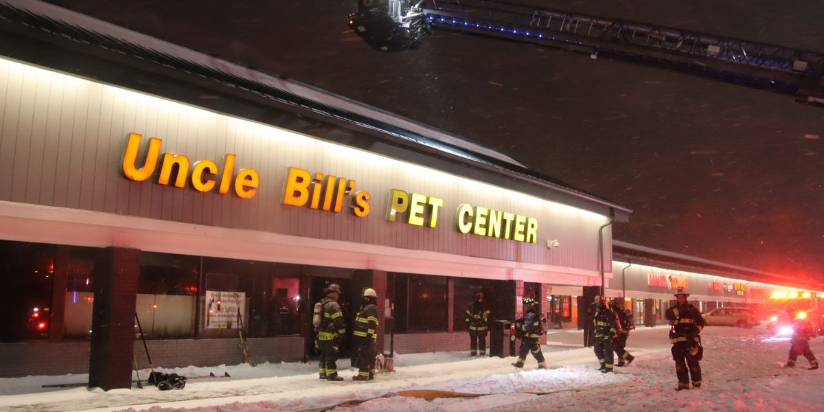 100 animals die in Indiana pet store fire