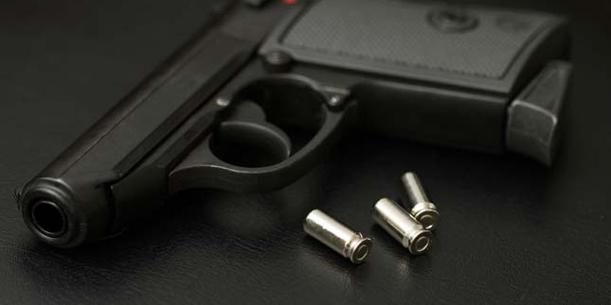 ICYMI: Several new Texas gun laws take effect Sept. 1