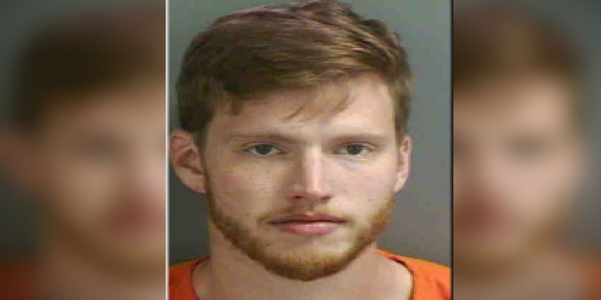 Deputies: Florida man punches gas pumps, car wash, tree after argument with girlfriend