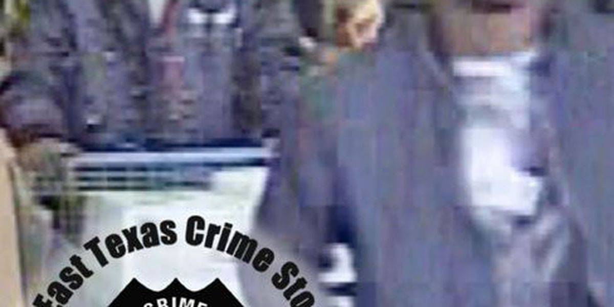 Crime Stoppers Crime of the Week: Purse-snatching thieves