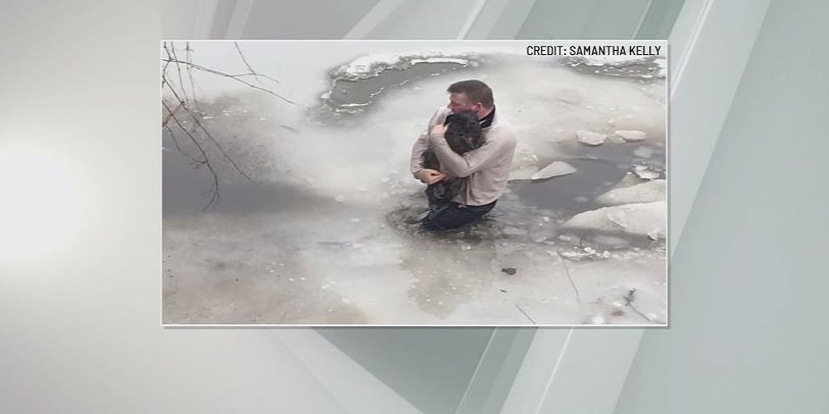 Good Samaritan rushes into icy creek to rescue stranger's dog