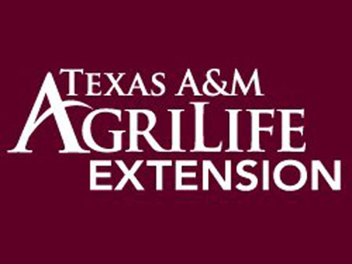East Texas Ag News: Ag extension agent shares composting tips