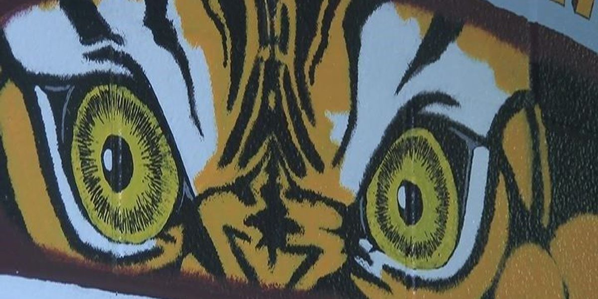Shelby Co. inmates getting second chance through jail house art project