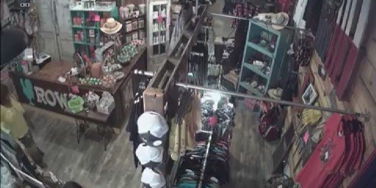 VIDEO: Thieves steal purses from Carthage business