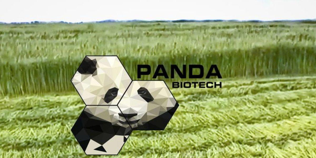 Panda Biotech chooses WF for hemp processing facility