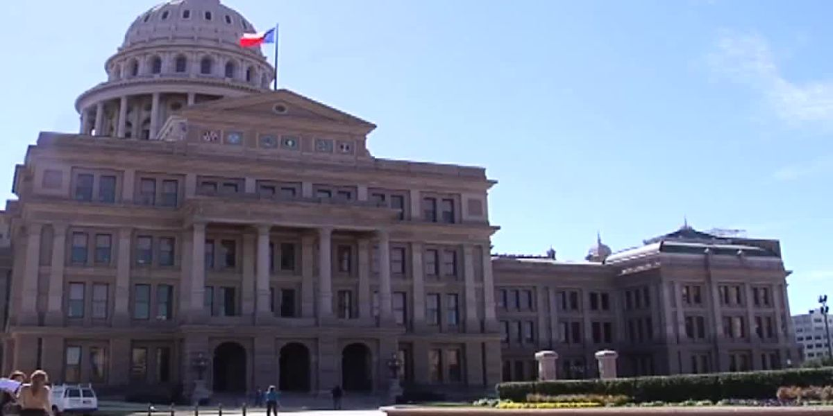 East Texas legislators talk about upcoming 87th Legislature