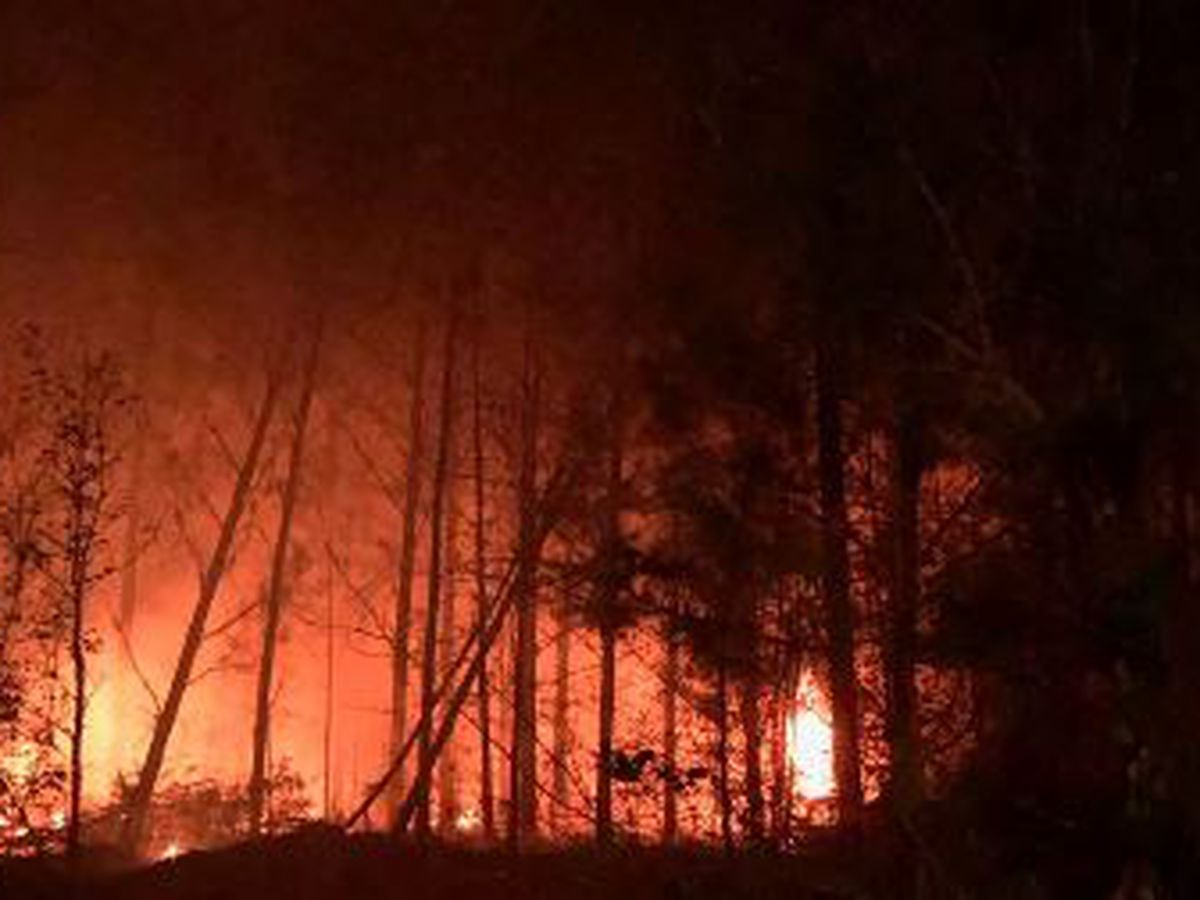 Wildfires in East Texas on the rise; relief in sight