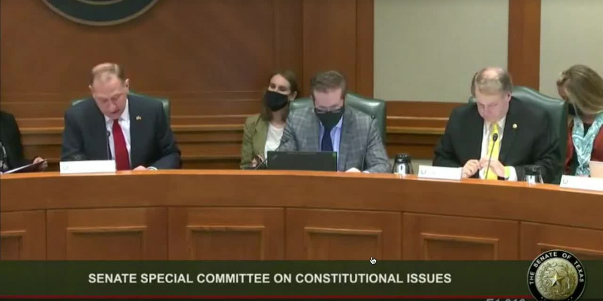 Senate committee votes 5-1 in favor of Rep. Schaefer's permitless carry bill