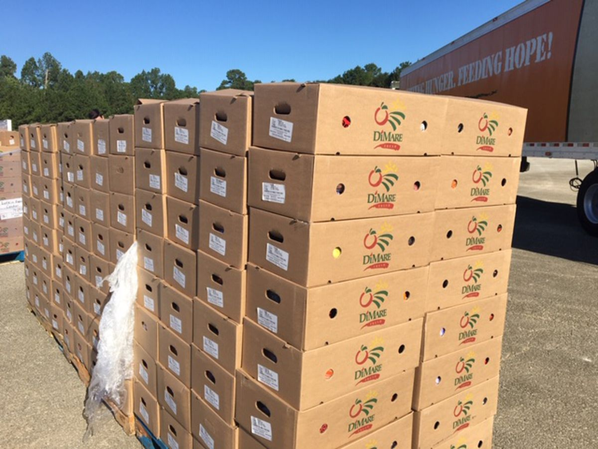 East Texas Food Bank distributes free produce at Lufkin Expo Center