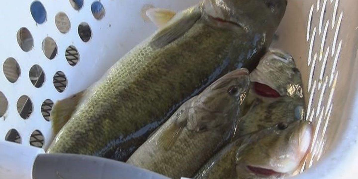 East Texans fish for veterans in Patriot's Challenge
