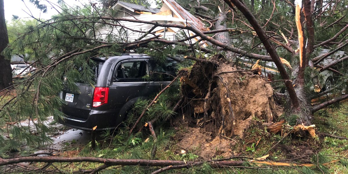 Damage, power outages reported after storms roll through East Texas