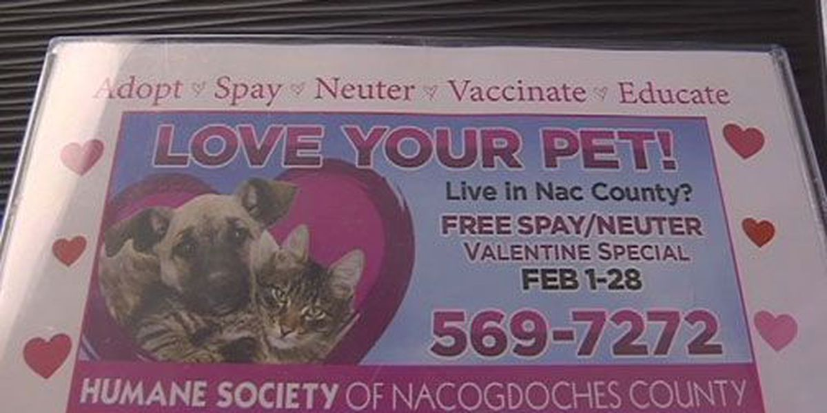 Nacogdoches Co. Humane Society offering certificates for free spays, neuters