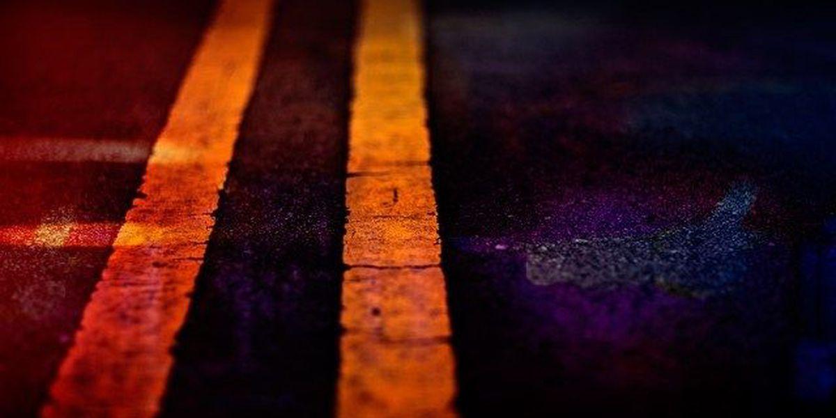2 people die in fiery 1-vehicle crash on FM 942 in Polk County