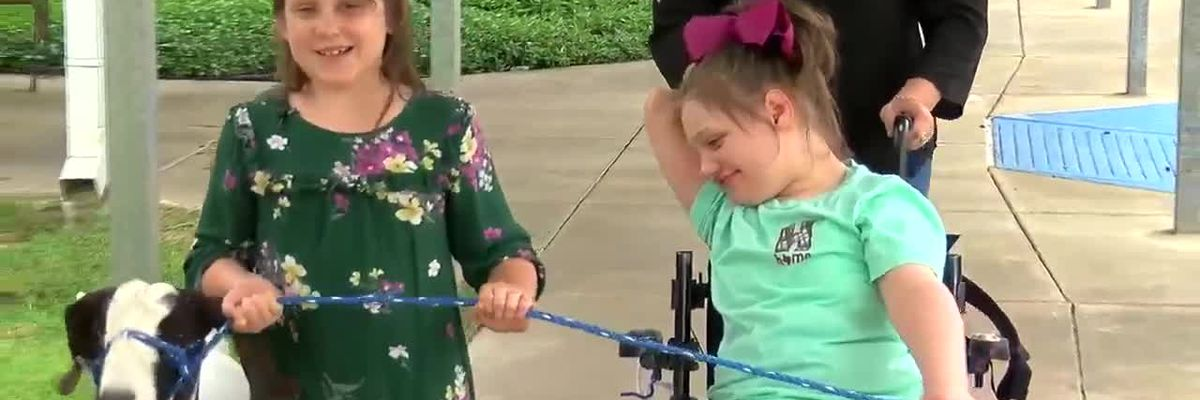 VIDEO: Angelina County Fair offers first-time showcase opportunity for special need participants