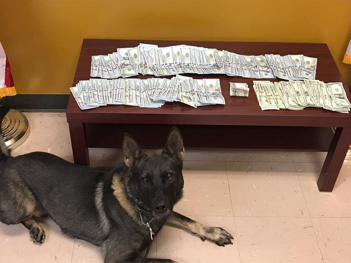 'Erratic' driver arrested for money laundering after pulled over by San Augustine Co. deputy