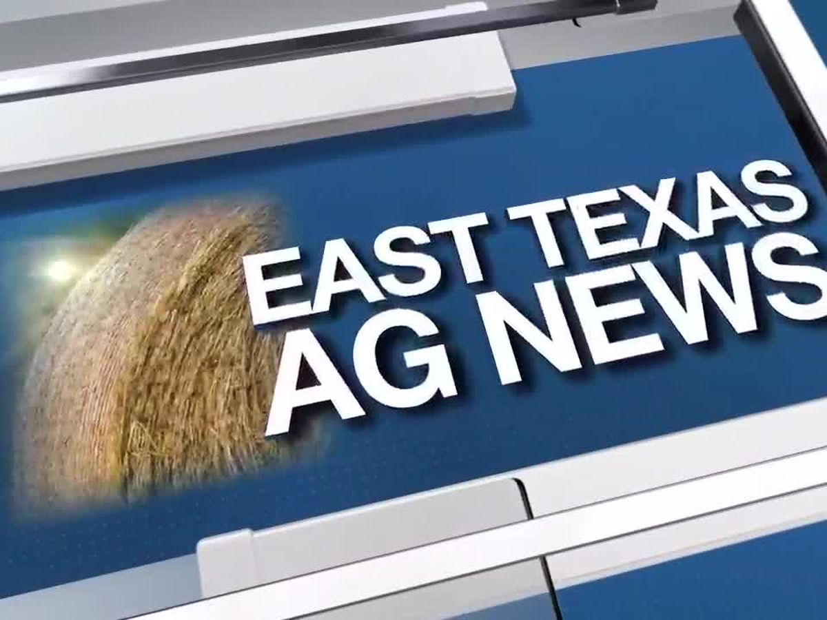 East Texas Ag News: Time to plant fruit trees and vines