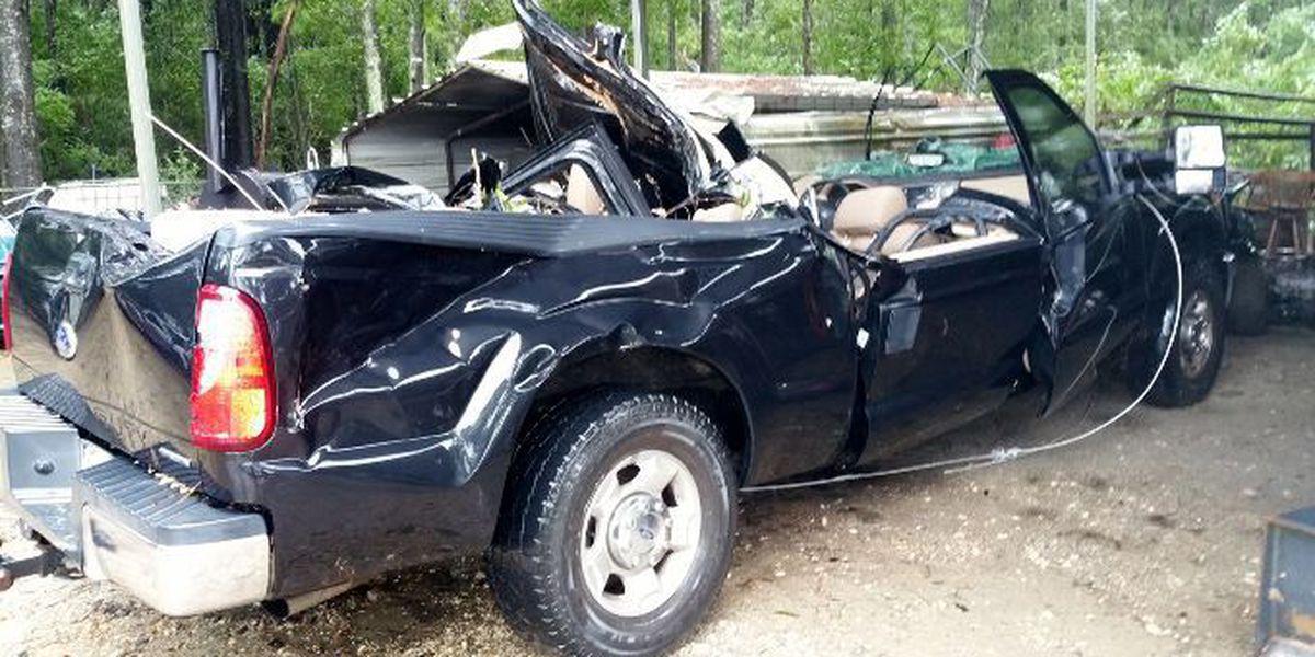 Two killed when tree falls on truck in Jasper County