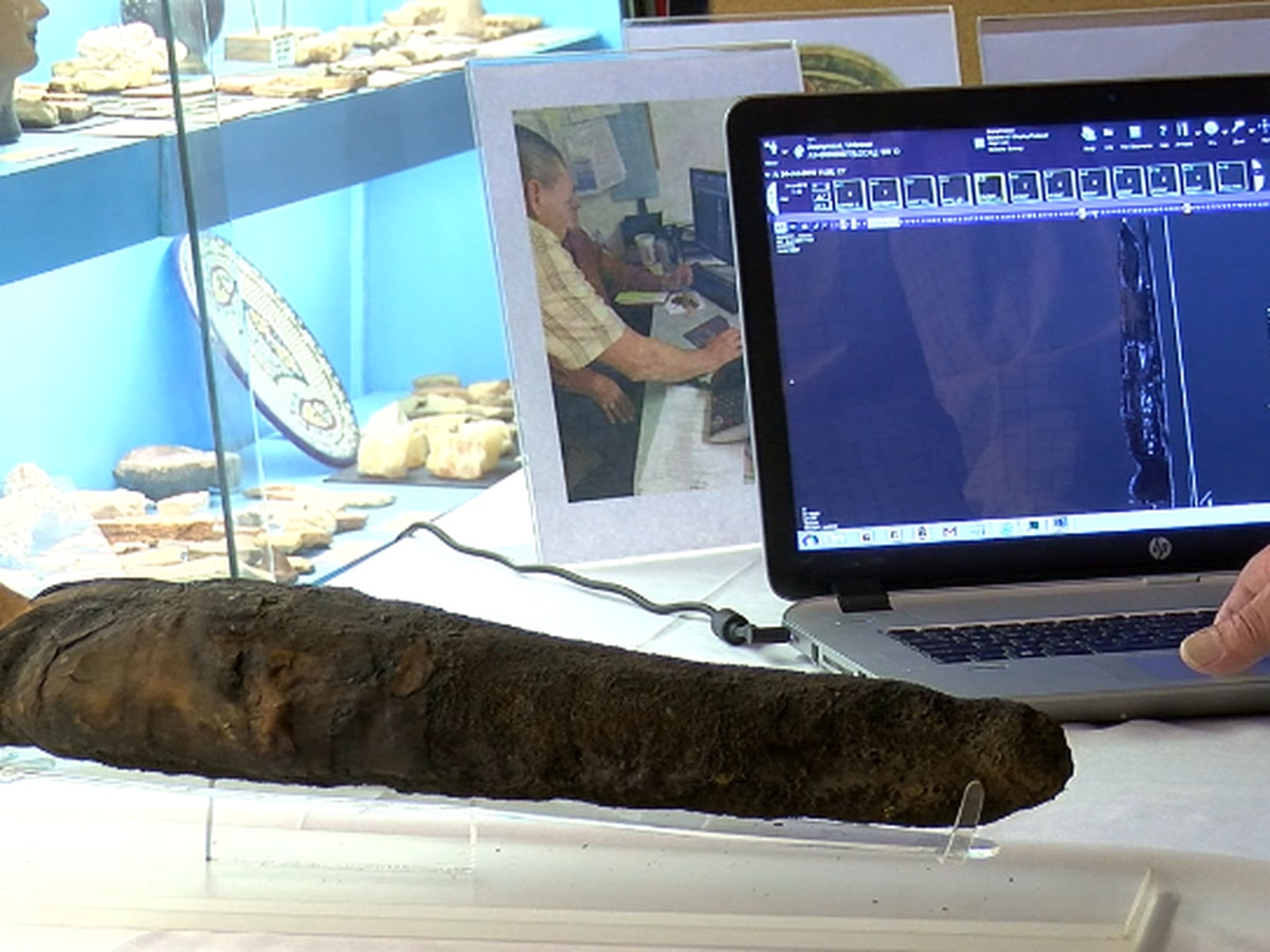 Natural history museum in Lufkin uses modern technology to examine mummified falcon