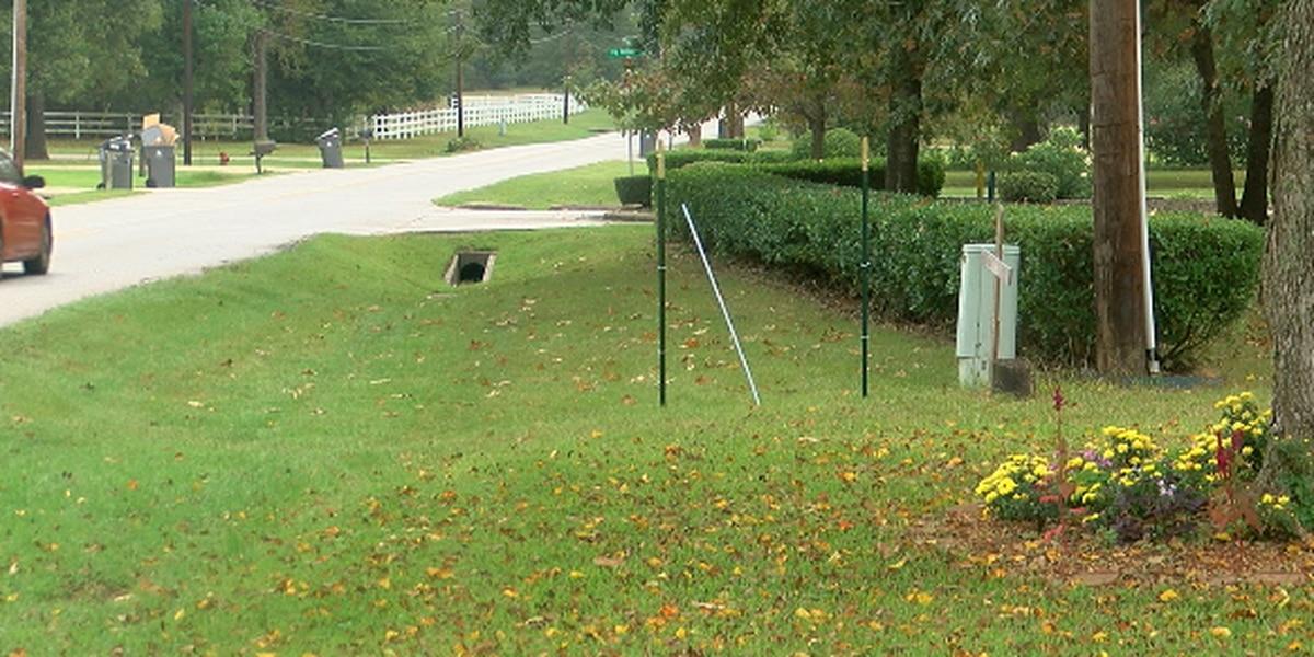 Political signs being stolen from Lufkin yards