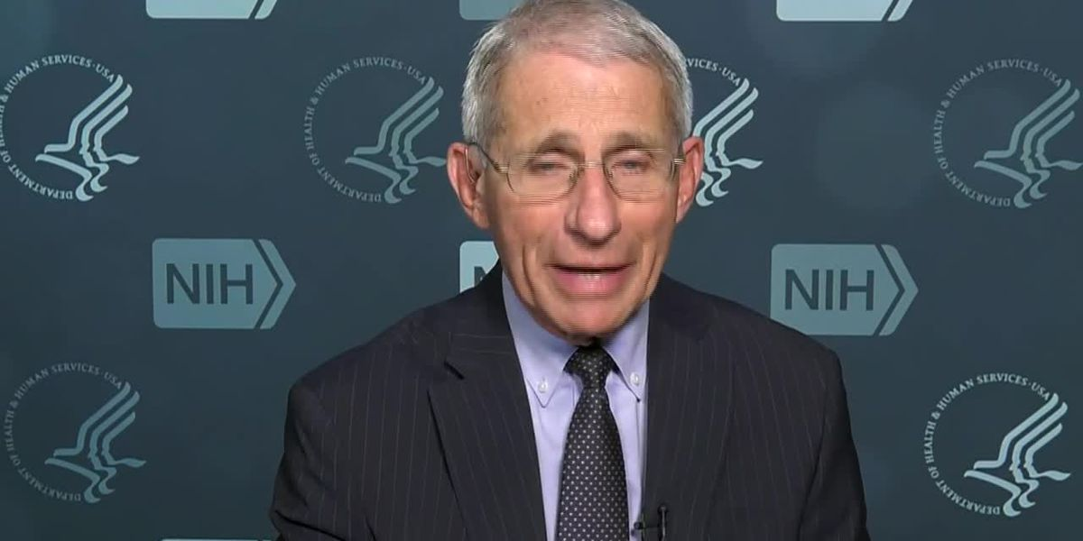 Fauci: 'Wouldn't be surprised' by 100,000 deaths from coronavirus