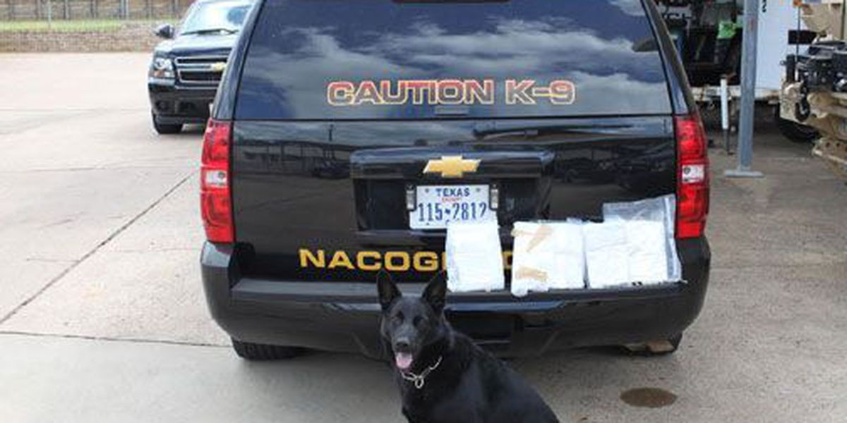 Traffic stop on Nacogdoches loop results in 2 drug arrests, seizure of 4 lbs of coke