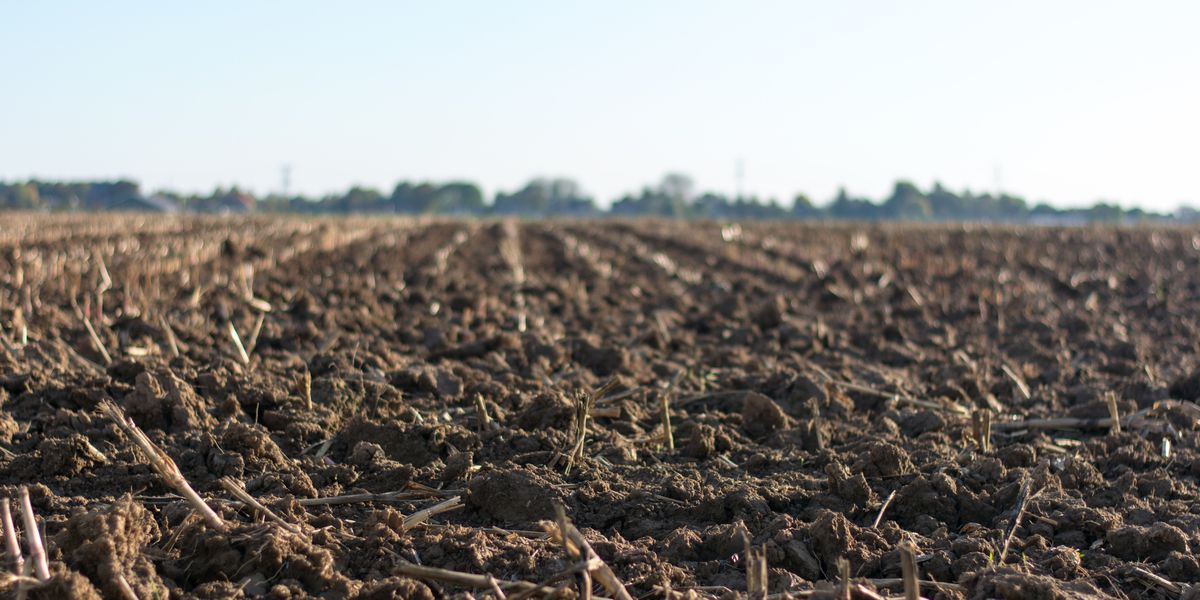 East Texas Ag New: How to properly apply nutrients to soil