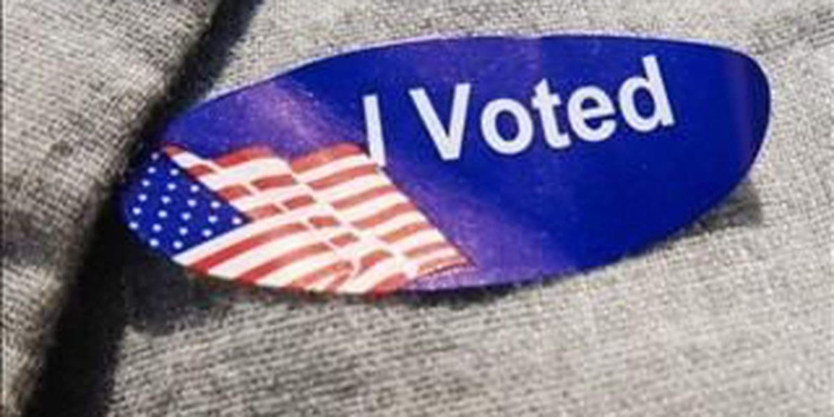 9 people arrested for alleged voter fraud in Hidalgo County