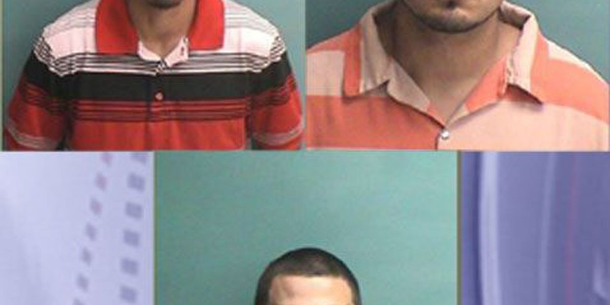 Nacogdoches Co. Sheriff's Office narcotics investigation results in 3 felony arrests