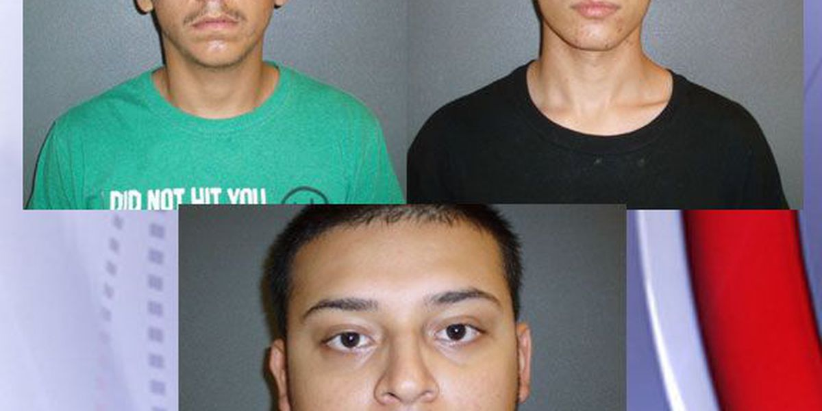 Houston County grand jury indicts 4 suspects in sexually charged home invasion robbery